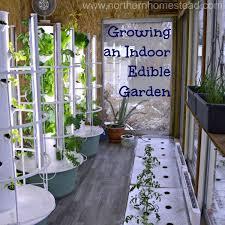 growing an indoor edible garden
