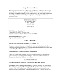 Resume Format For Government Jobs It Resume Cover Letter Sample