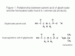 Glyphosate A Review Integrated Crop Management