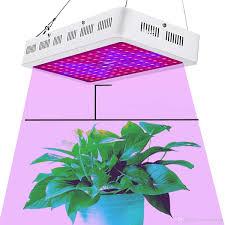 Morsen Led Grow Light Indoor Led Grow Light 1200w Morsen Full Spectrum Growing Lamp Double Chips 10w Led Indoor Plant Lamp For Greenhouse Hydroponic Vegetables 600w Led
