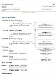 Chronological Cv Resume Templates What Chronological Resume