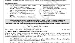 Amazing Resume Service Phoenix Contemporary Resume Ideas