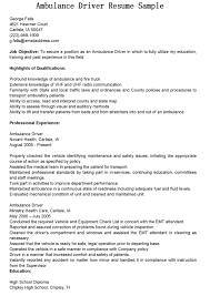 Ieee Resume Format It Resume Cover Letter Sample Resume For Study