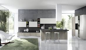 extremely bold kitchen designs concrete