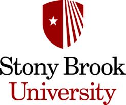 Stony Brook University Finance And Accounting