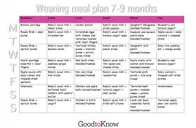 Baby Food Meal Planner 7 9 Months