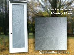 pantry door with frosted glass and nature theme etched doors tree branches leafs 24x80