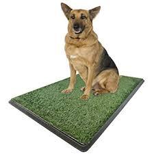 dogs bathroom grass. x-large potty pad - indoor dog bathroom 30\ dogs grass