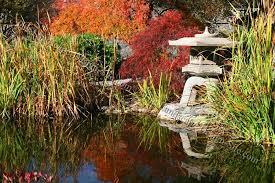Zen Garden Design Ideas Simple Zen Garden Design Plan Gallery