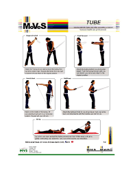 Back Exercises Gym Chart 46 Printable Exercise Charts 100 Free Template Lab