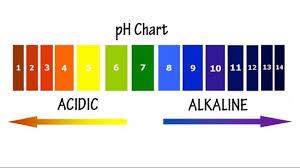 Ph Chart Alkaline 5 Steps To Restore Your Bodys Natural Fertile Balance