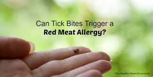 Can Tick Bites Trigger Allergies to Red Meat?   The Healthy Home ...