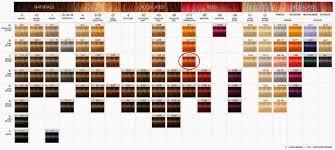 Igora Vibrance Shade Chart Pin By Nancy Powell On Hair Schwarzkopf Hair Color Chart