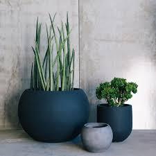 Small Picture Designer Pots by The Balcony Garden Garden Pots Pot Plants