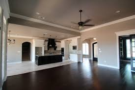 Tricorn Black Sherwin Williams Couto Homes Paint Color Scheme Sherwin Williams Perfect Greige On