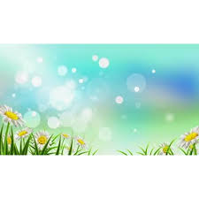 Spring Powerpoint Spring Reflections Video Background For Powerpoint