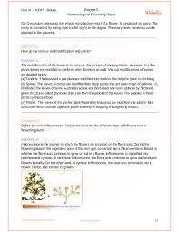 ncert solutions for cl 11 biology