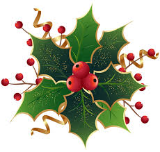 Image result for holly border