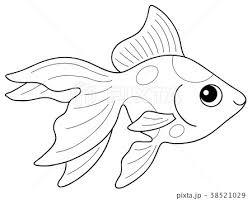 金魚 リュウキン 2色 ぬりえのイラスト素材 38521029 Pixta