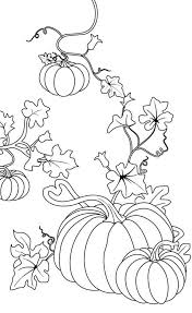 pumpkin drawing with leaves. pumpkins, pumpkins coloring page: pagefull size image pumpkin drawing with leaves