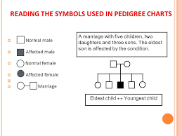 What Are Pedigree Charts Used For Pedigree Charts A Family History Of A Genetic Condition Or