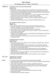 Financial Analyst Job Description Resume Junior Financial Analyst Resume Samples Velvet Jobs 98