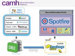 Frontiers The Camh Neuroinformatics Platform A Hospital