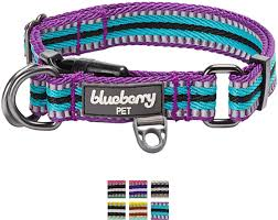 Blueberry Pet Collar Size Chart Blueberry Pet 3m Reflective Multi Colored Stripe Dog Collar Violet Celeste Small
