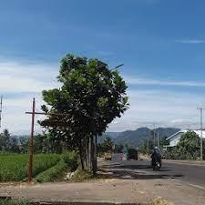 Kebakaran pabrik kasur di sukabumi (foto: Pt Wijaya Agro Indonesia Jalur Lingkar Selatan Sukabumi 2021
