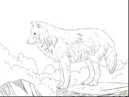 Realistic Wolf Coloring Pages Get This Realistic Wolf Coloring Pages