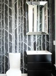Bathroom Decoration Ideas Fetching Us