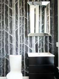 Bathroom Decoration Ideas Fetching Us