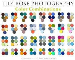 Color Family Chart Color Chart Photography Family Photo Colors Family