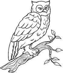Small Picture Birds Of Prey Coloring Pages Kids Activities Birds Coloring 16574