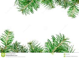 Pine Branches For Decoration Christmas Border Stock Photo Image 33251300