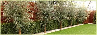Small Picture r4improvement Landscape gardening garden design construction