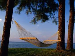 Image result for hammock