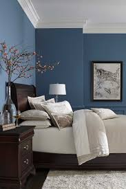 D Contemporary Ideas Decorating Ideas For Bedrooms With Blue Walls