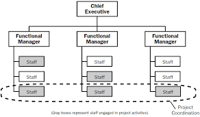 Example Of Functional Chart The 4 Types Of Project Organizational Structure