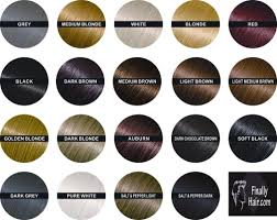 10 Best Hair Loss Concealer Reviews In 2019 Hold The Hairline