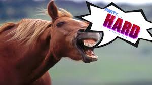 Image result for horse party