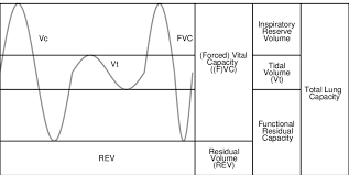 7 Example Respiratory Measurements Highlighting Forced