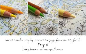 coloring books coloring tips coloured pencils pastel drawing secret garden step by step day 6 grey leaves and orange flowers