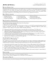 Grain Merchandiser Sample Resume Mesmerizing Visual Merchandising Resume Resume For Visual Merchandiser Fashion