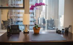 workspace office. Enjoying A View Like This During The Day Can Help You Fall In Love With Your New Office Space. Workspace