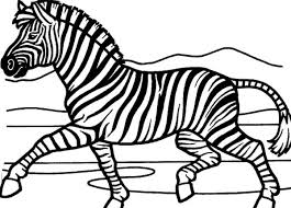 Small Picture Zebra Coloring Pages The Zebras In A Forestjpg Coloring Page mosatt