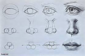 eyes nose lips drawing