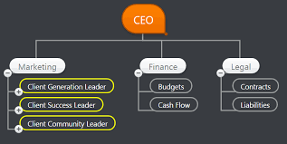 Consulting Company Org Chart Organizational Chart Template For Consulting Companies