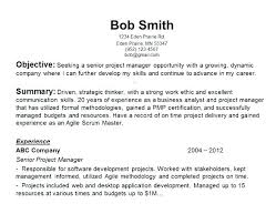 Examples Of Objective Statements On Resumes Overview Resume Examples Objective Statements Resume Example Samples