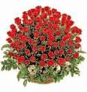 Анимация открытки розы